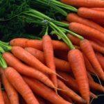 Как сохранить морковь на зиму в домашних условиях в квартире