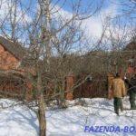 Основные работы на даче в феврале в Подмосковье