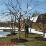 Что делать на даче в конце марта – начале апреля