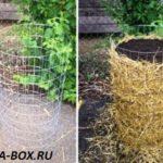 Выращивание картофеля в контейнере из металлической сетки