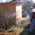 Препараты для обработки сада весной от болезней и вредителей