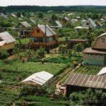 Новый закон о садоводстве, огородничестве и дачном хозяйстве принят