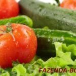 Какие томаты и огурцы будем сажать в 2018 году - форум