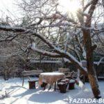 Работы в саду в конце февраля начале марта