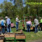 «Дача в большом городе» - проект московского правительства ко Дню Земли