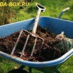 Основные виды органических удобрений и особенности их применения