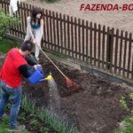 Разница между садоводами и огородниками