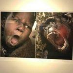 В Китае закрыли фотовыставку, где африканцев сравнили с дикими животными