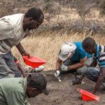 В Африке нашли следы «Чубакки»