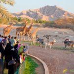 «World Desert Oasis» — парк дикой природы в ОАЭ