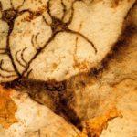Пещерные люди начали создавать письменность еще в Африке