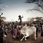 Африка от восхода до заката: поездка занимает один день